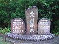 屋久島荒川林道DSC02116.JPG