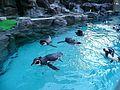 松島水族館 Matsushima Aquarium - panoramio (1).jpg