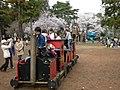 淵野辺公園の汽車 - panoramio.jpg