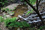 白岩の滝 - panoramio (37).jpg