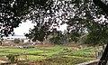 罗村 上柏 亨美 仅存的瘦田 - panoramio (1).jpg