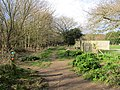 -2019-03-05 Footpath between East and West Runton, Norfolk (6).JPG