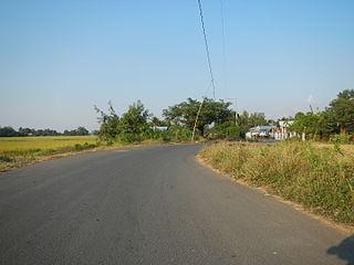 Znečisťovanie lúk a polí dopravou