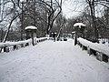 10. Bucuresti, Romania. Parcul Cismigiu in ultima zi de iarna 2018 (Vedere de pe pod).jpg