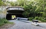 16 in gun Fort John Custis VA1.jpg