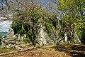 171008 Shingu Castle Shingu Wakayama pref Japan31n.jpg