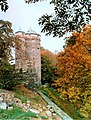 19861007360AR Stolpen Burg Coselturm.jpg