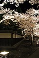 1 Ōtemachi, Aizuwakamatsu-shi, Fukushima-ken 965-0873, Japan - panoramio (17).jpg