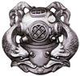 1st Class Diver Insignia.png