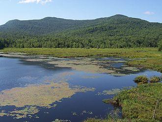Mont-Orford National Park - Image: 2007 07 Parc du Mont Orford Étang Fer de lance