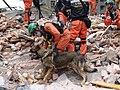 2008년 중앙119구조단 중국 쓰촨성 대지진 국제 출동(四川省 大地震, 사천성 대지진) DSC09472.JPG