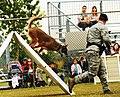 2013 North Dakota Peace Officer Association K-9 Police Trials 130814-F-EM852-102.jpg