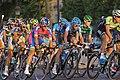 2013 Tour de France (9359362615).jpg