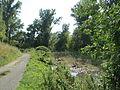20140724Hochwasser Altlussheim17.jpg