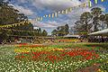2015-09-18 Floriade Canberra 2015 - 13.jpg