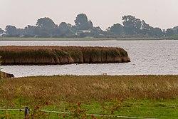 2015 Naturschutzgebiet Fauler See 04.jpg