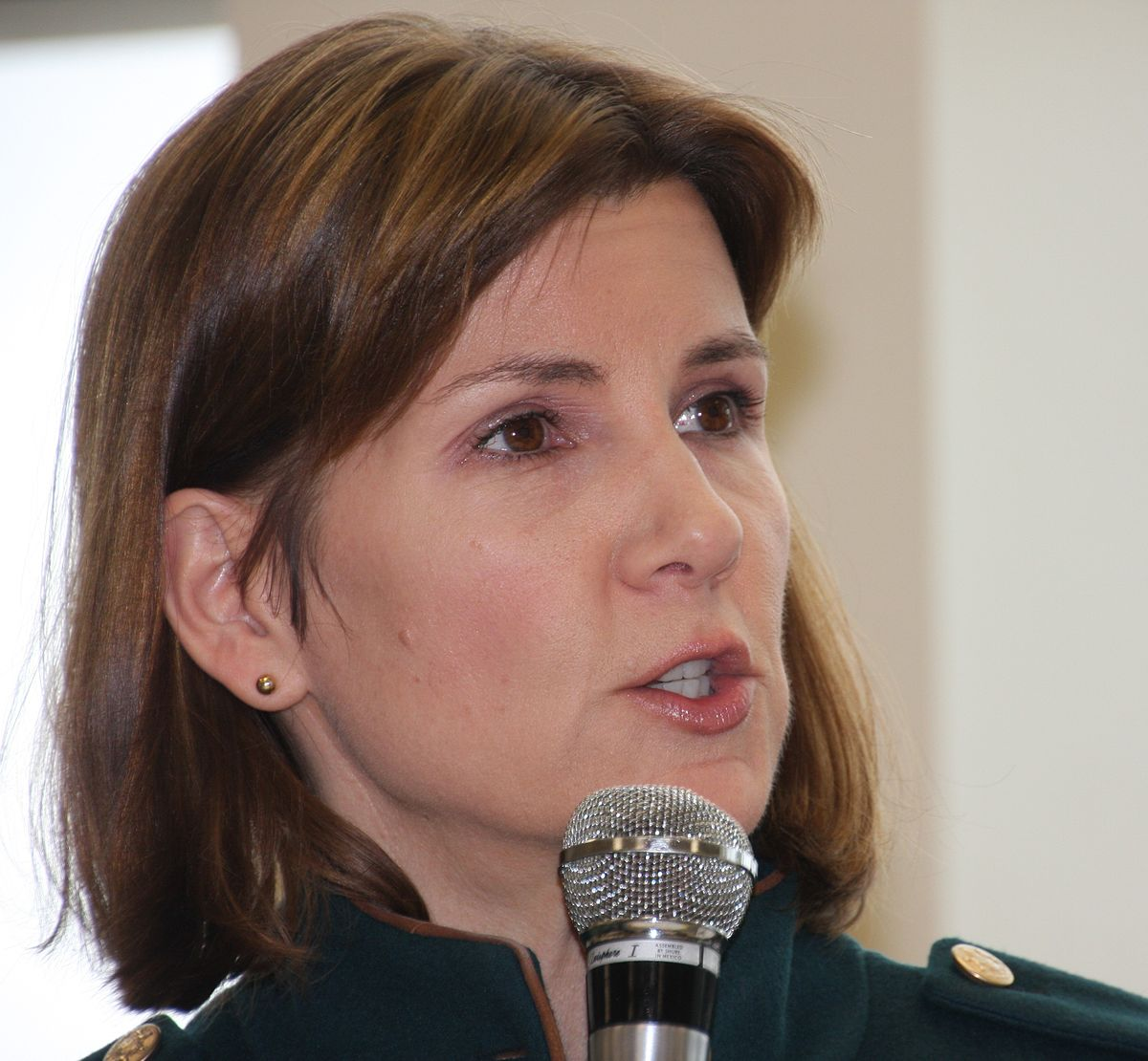 Lori Swanson - Wikipedia