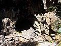 2017-08-17 Lava River Cave 02.jpg