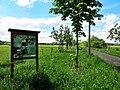 2019-05-13-bonn-annaberger-strasse-infotafel-obstbaum-allee-01.jpg