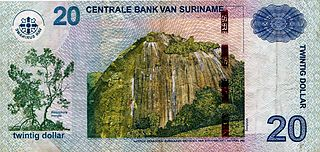Surinamese dollar currency