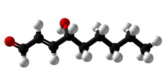 4-Hydroxynonenal - Image: 4 Hydroxynonenal 3D Balls