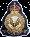 71 Eagle Squadron Crest.png