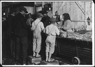 Biloxi, Mississippi - Child laborers picking shrimp in Biloxi, 1911.  Photo by Lewis Hine.