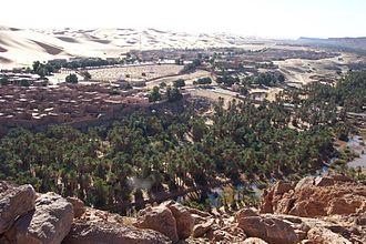 Oasis - Taghit, Algeria
