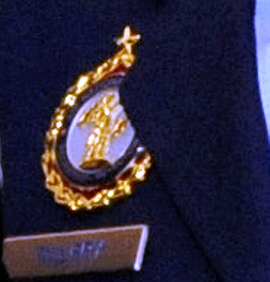 ANG Senior Gold Recruiting Service Badge
