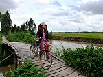 A Vietnamese woman in the Mekong Delta makes her way home (9149484918).jpg