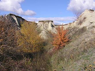 Gully - Image: A gully (Budanova Gora) 3