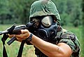 A member of the security police squadron from Dover Air Force Base fires his M16 rifle while wearing an M-17A1 field protective mask during the rifle competition phase of DEFENDER CHALLENGE 87.jpg