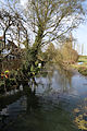 A north view of the River Roding at Fyfield, Essex, England.jpg