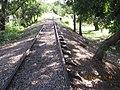 Abandoned Railway Darwin - panoramio (2).jpg