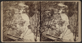 Abram F. Palmer's mill dam, south of Cornwall Plain, by Seward J. Barnes.png