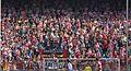 Afición del Atlético de Madrid - 01 (cropped).jpg