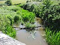 Afon Braint below Pont Sarn-Las - geograph.org.uk - 861781.jpg