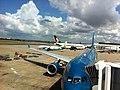 Air Vanuatu in Sydney (7880392472).jpg