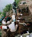 Alagnak River Site (DIL-161).jpg
