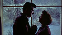 All That Heaven Allows (1955) trailer 1.jpg