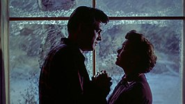Rock Hudson en Jane Wyman in All That Heaven Allows