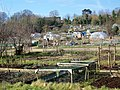 Allotments, Bishopdown - geograph.org.uk - 1716332.jpg