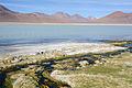 Altiplano, Bolivien (11214971425).jpg