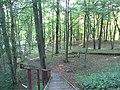 Alytus, Lithuania - panoramio (14).jpg