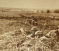 American troops in the field during World War I.JPG