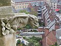 Amiens - sur les hauteurs de Notre-Dame, gargouille (2).jpg