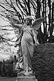 Angel (24121402139).jpg