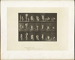 Animal locomotion. Plate 493 (Boston Public Library).jpg
