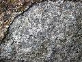 Anorthosite xenolith (anorthosite series, Duluth Complex, Mesoproterozoic, 1099 Ma; Keene Creek East Skyline Parkway roadcut, Duluth, Minnesota, USA) 7 (22040429488).jpg