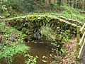 Arched bridge below the Hermitage - geograph.org.uk - 789531.jpg